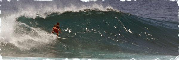 Surf-1_web