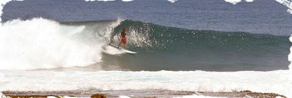 Surf-2_web