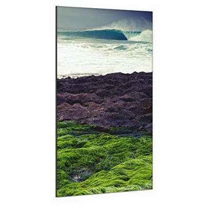 Surfhund Leinwandbild Green Empty Wave