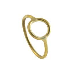 surfhund ring