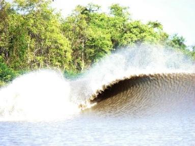 River Wave Pororoca