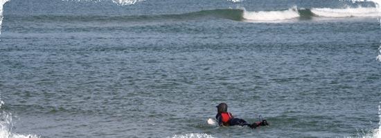 nina hortig surf