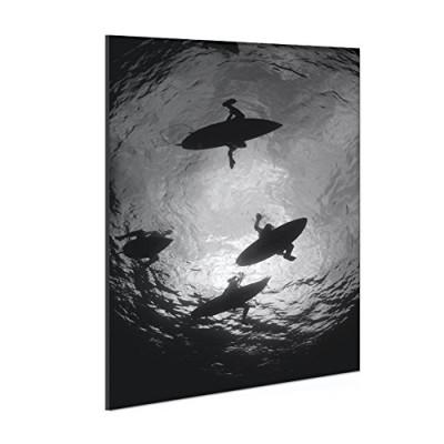 Surfhund Leinwandbild Sharkview