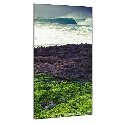 Surfhund Leinwandbild Green Empty Wave